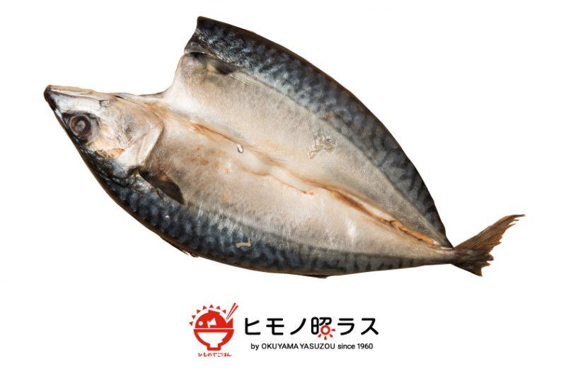 【ヒモノ照ラス】ジューシな脂の乗ったトロサバの干物